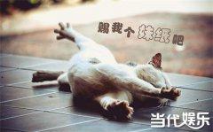 单身久了是什么感觉 胡歌彭于晏李易峰王凯谁是最帅单身狗