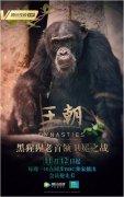 官宣:腾讯视频×BBC 纪录片《王朝》定档11月12日